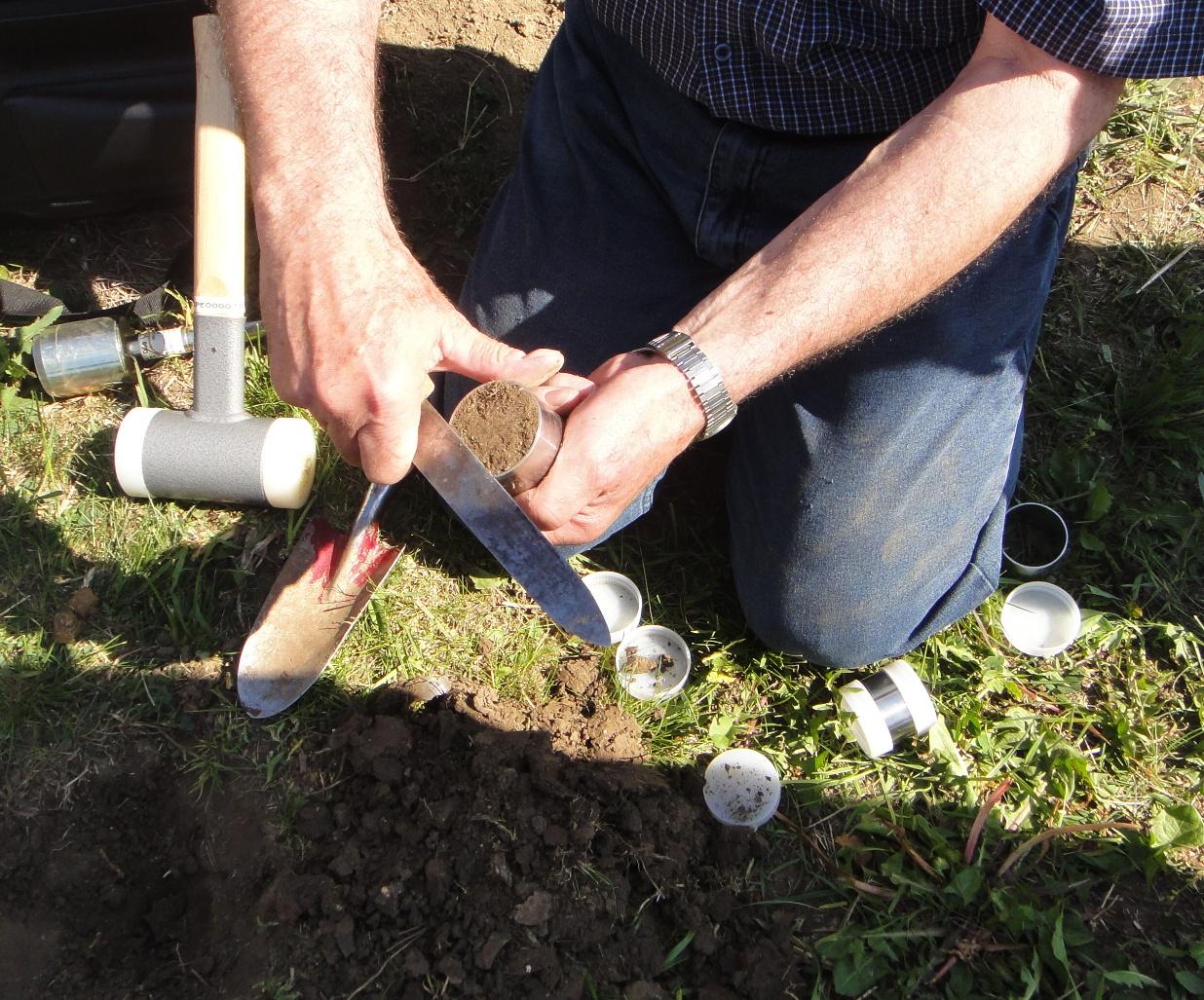 Undisturbed soil core sample for Soil xat cut off